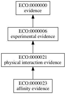 ECO:0000023